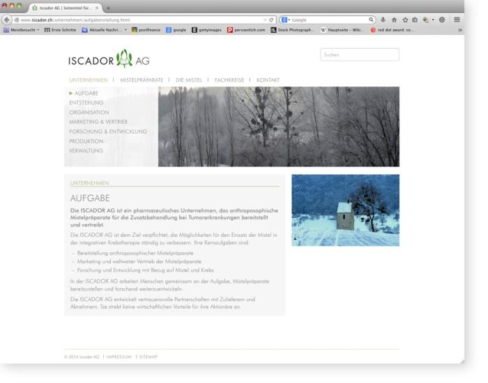 Iscador_Web